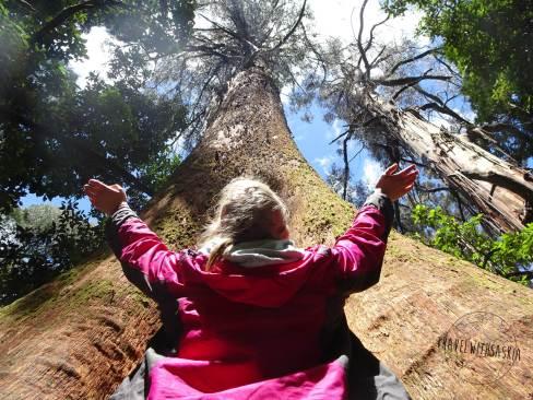 Otways Nationalpark
